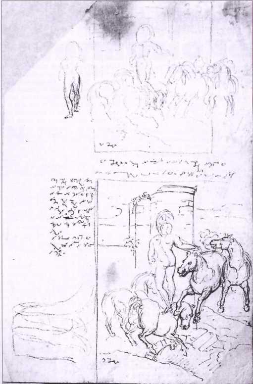 disegno stenografato da patriota del risorgimento italiano