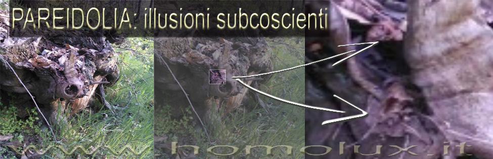 pareidolia illusioni subcoscienti