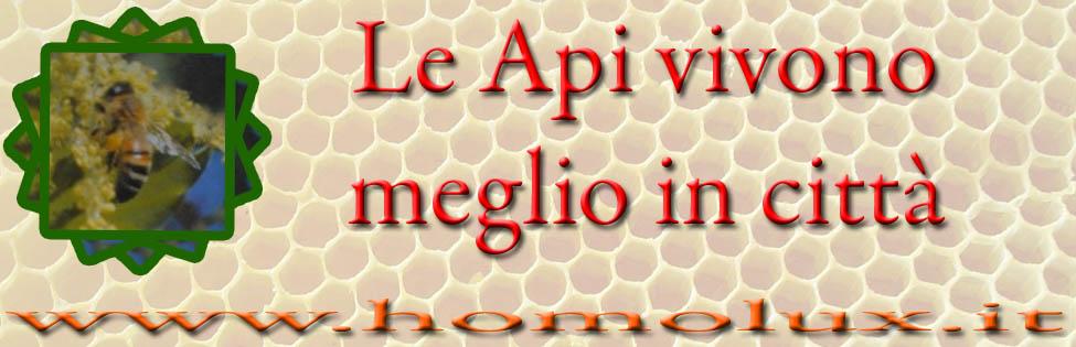 Foto Alberto Contessi le api ed. Edagricole