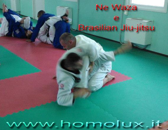 brasilian jiu-jitsu e ne waza