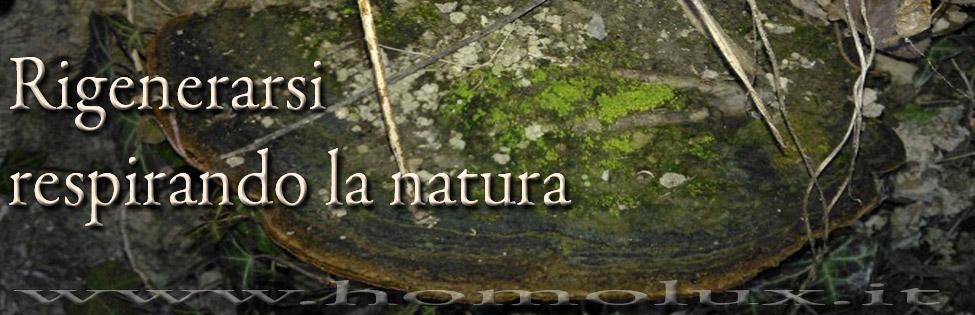 rigenerarsi respirando la natura