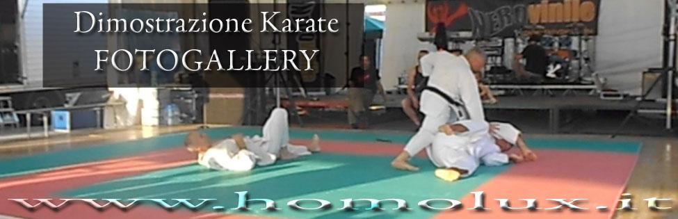 fotogallery dimostrazione karate