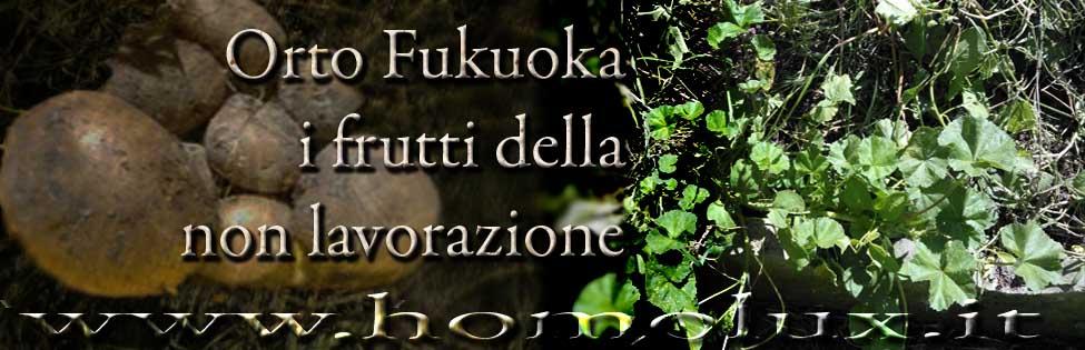 patate fukuoka i frutti della non lavorazione