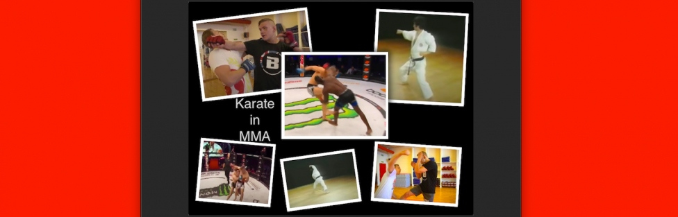 Karate in MMA